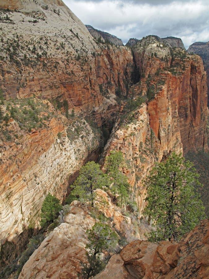 Doppia traccia della scogliera alla cima di atterraggio di Angeles del punto di riferimento, Zion National Park, U.S.A. immagine stock