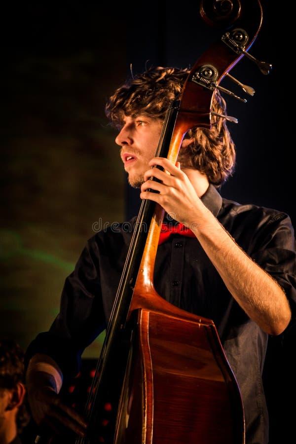 Doppio bassista dall'università di Lovanio fotografia stock