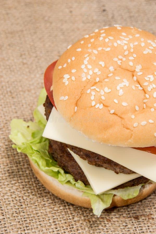 Doppio hamburger immagine stock libera da diritti