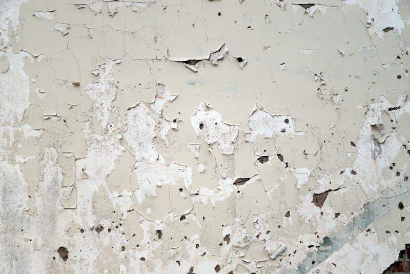 Dor branca pealing crepitada na parede fotografia de stock royalty free
