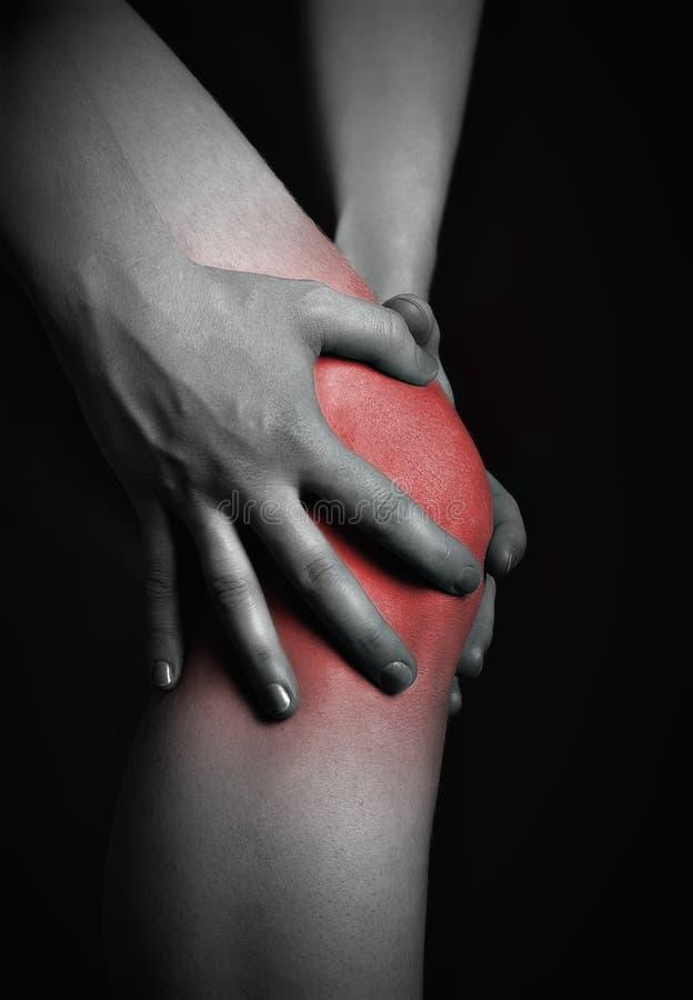 Dor no joelho. Quiroprático que faz a massagem no joelho doente no vermelho imagens de stock royalty free