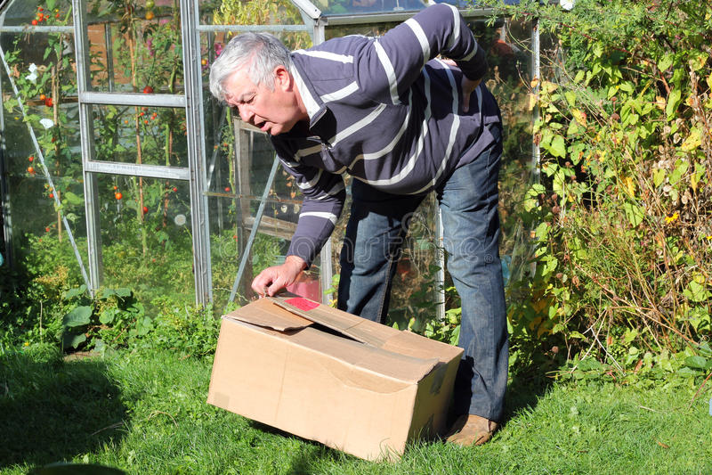 Dor traseira que levanta a caixa pesada incorretamente. fotografia de stock royalty free