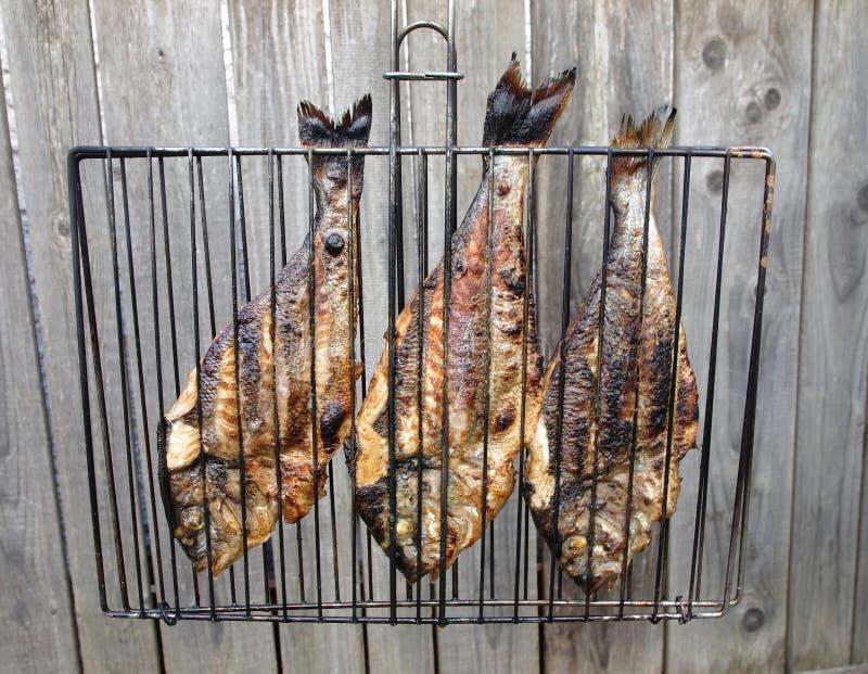 Dorada-Fische auf Grill stockfotos