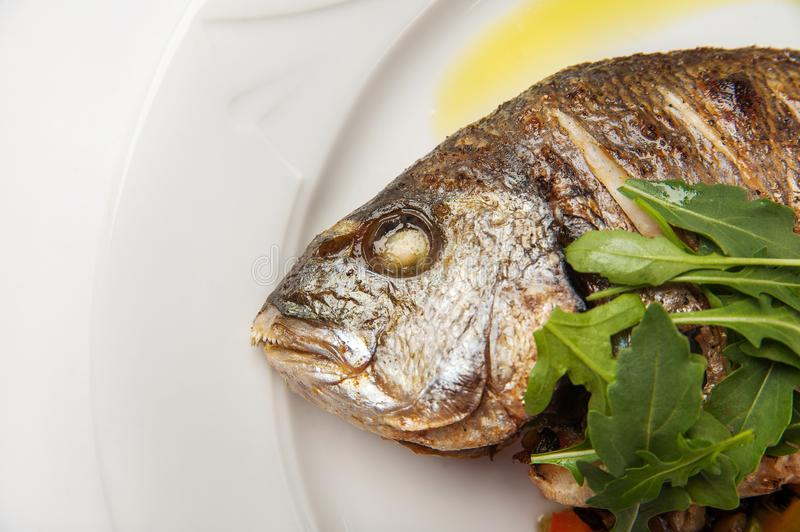 Dorada fish head close up. Grilled dorade on a white plate with sauce, arugula on a white plate isolated on whitebackground. Dorada fish head close up. Grilled stock image