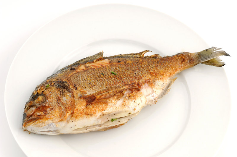 Dorade. On a white plate stock images