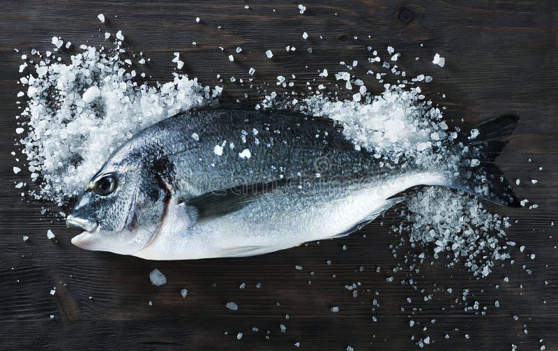 Dorado del pesce fresco sul bordo nero con sale immagine stock