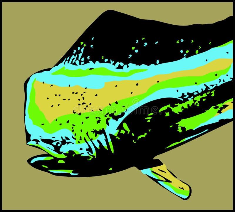 Dorado delfinu samiec ryba - wektor ilustracja wektor