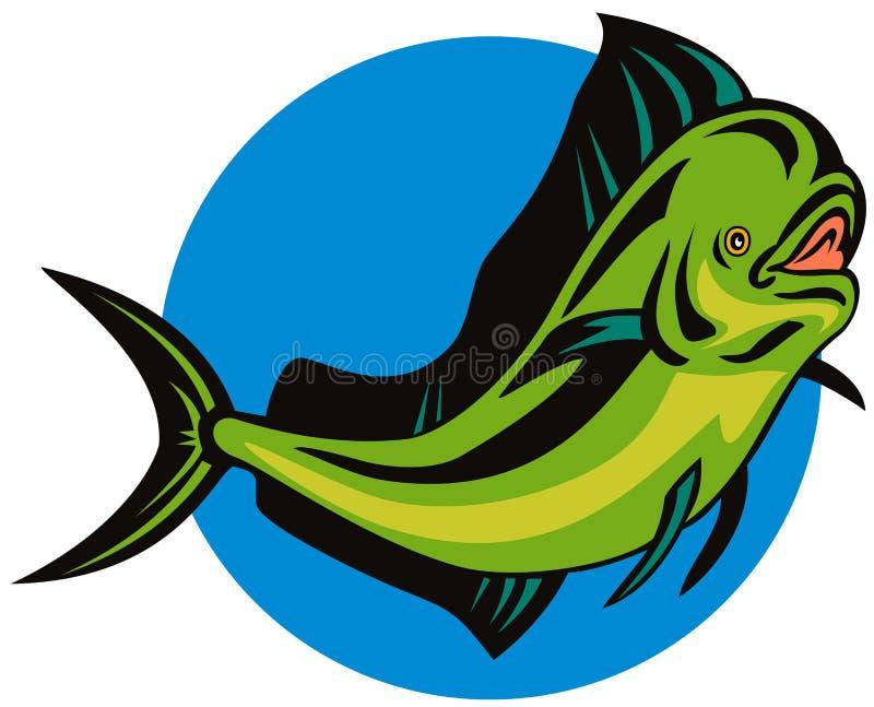 Dorado dolphin fish. Vector art of a Dorado dolphin fish isolated on white royalty free illustration