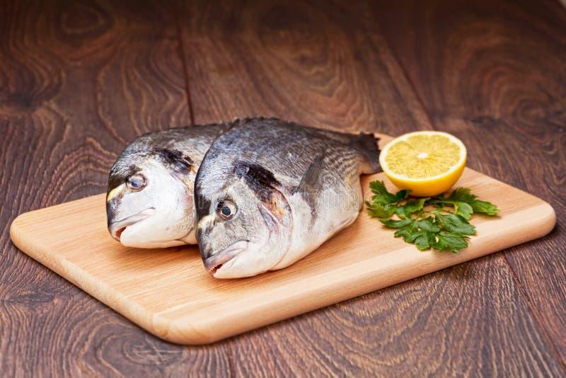 Dorado fish royalty free stock photo