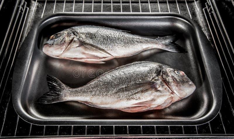 Dorado fish in the oven. royalty free stock photos