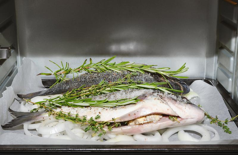 Dorado fish in the oven. Prepared for baking. royalty free stock image