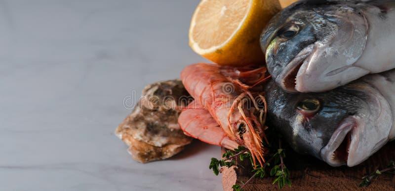 Dorado fresco del pesce di mare con le ostriche e gamberetto e verdure immagini stock libere da diritti