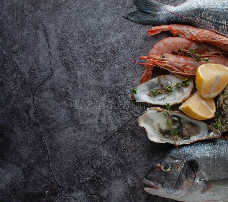 Dorado fresco del pesce di mare con le ostriche e gamberetto e verdure immagine stock