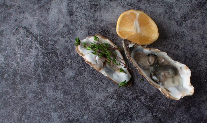 Dorado fresco del pesce di mare con le ostriche e gamberetto e verdure fotografie stock libere da diritti