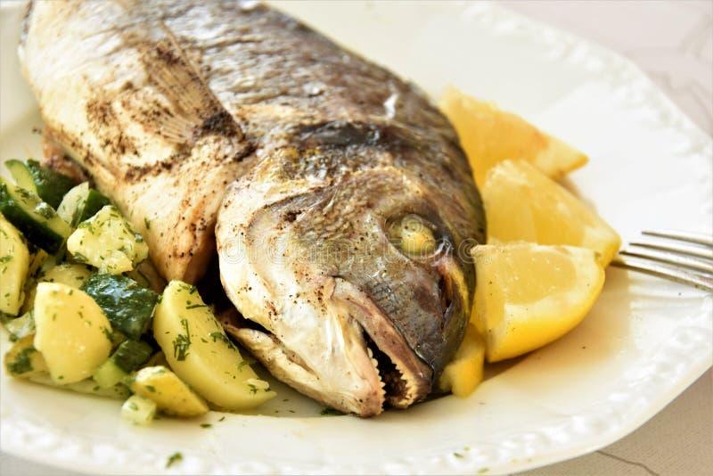 Dorado ha cotto il pesce nel forno, le bugie con le patate ed il limone fotografie stock