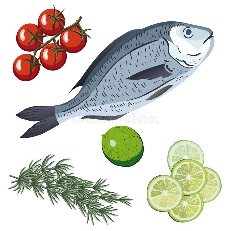 dorado Ingrediënten en kruiden voor het koken van vissen stock illustratie