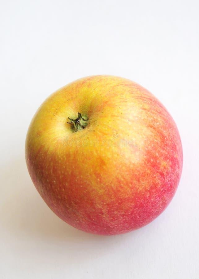 Dorato con la mela di colore rosso immagini stock libere da diritti