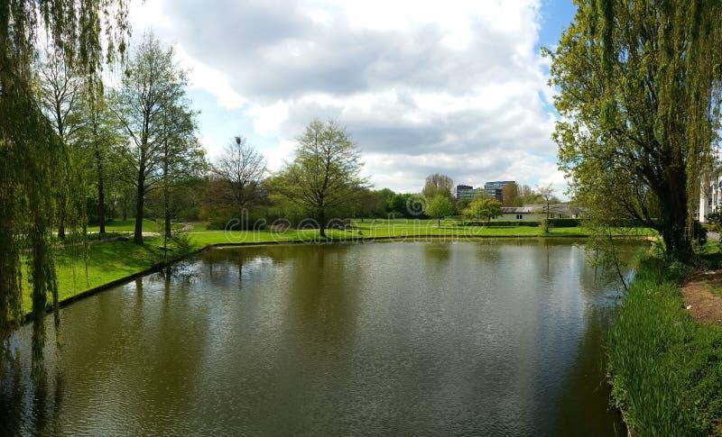 dordrecht的湖 免版税库存照片