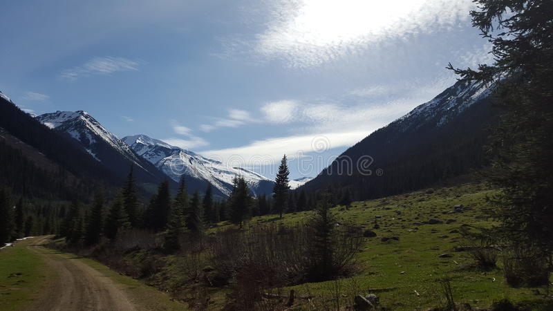 Dore River Valley. This picture features a view of the snow capped mountains up the Main Dore Valley near McBride, British Columbia royalty free stock photo