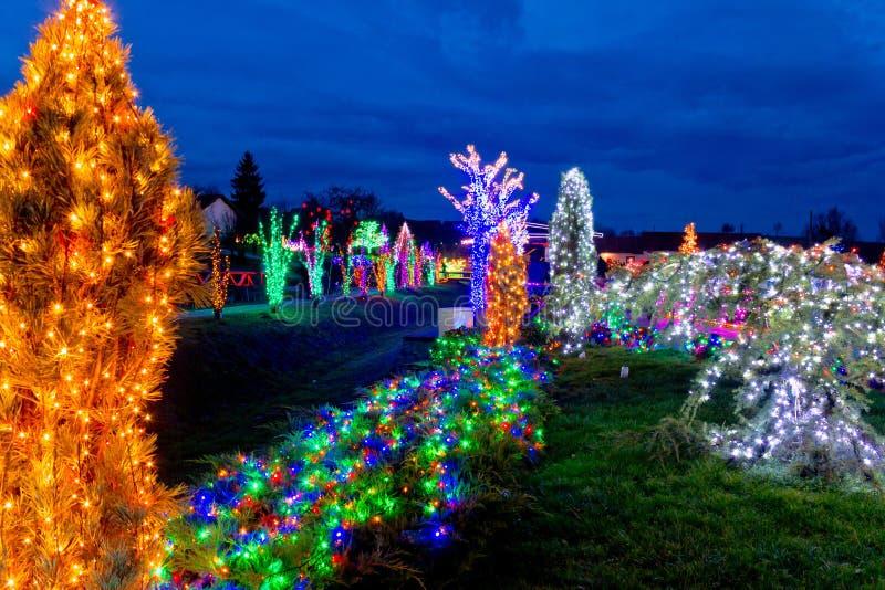 Dorf in den bunten Weihnachtslichtern stockfotografie