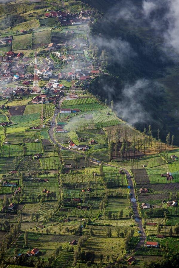 Dorf Hochland Cemoro Lawang stockbilder