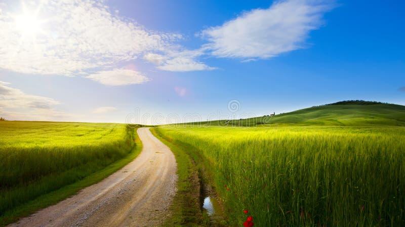 Dorf in Toskana; Italien-Landschaftslandschaft mit Toskana-rol stockbild
