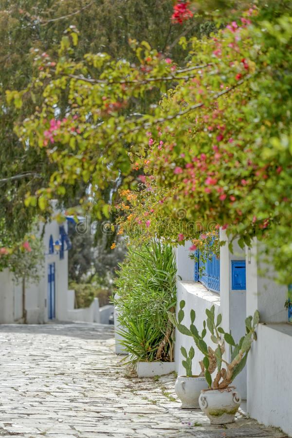 Dorf in Tunesien lizenzfreie stockfotos