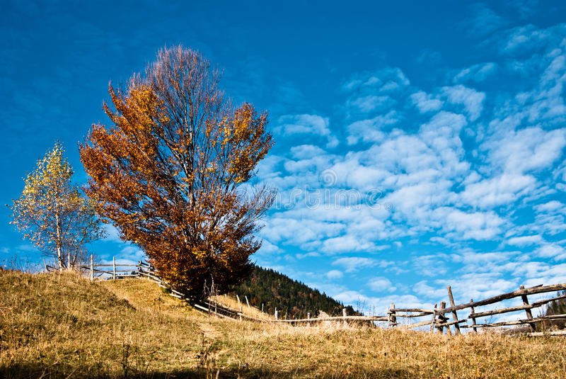 Dorflandschaft in Rumänien lizenzfreie stockbilder