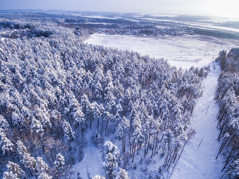 Dorfnahfeld Winterwald herum Bewölkter Himmel und Sonne Schattenbild des kauernden Geschäftsmannes lizenzfreie stockbilder