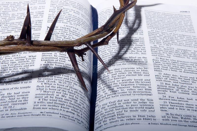 Dornenkrone auf Bibel stockbild