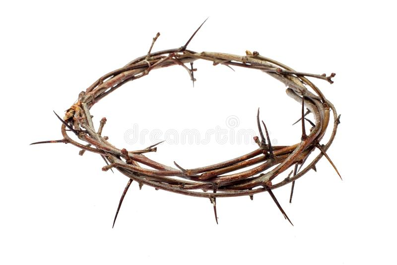 Dornenkrone Jesus Christ isolaten auf weißem stockfotografie