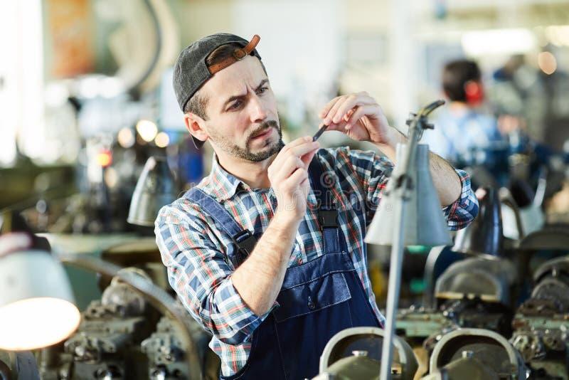 Dorośleć mężczyzny Pracuje przy rośliną zdjęcia stock
