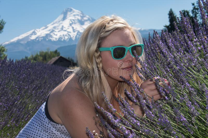 Dorosła kobieta obwąchuje dzikich lawendowych kwiaty w Oregon Selekcyjna ostrość dla artystycznych purposes zdjęcia stock