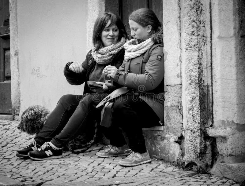 Dorosłe kobiety z psim gawędzeniem na ulicznych psach zdjęcia stock