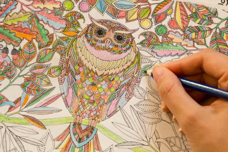 Dorosłe koloryt książki z ołówkami, nowy stres uśmierza trend, mindfulness pojęcia osoby barwić illustrative fotografia royalty free