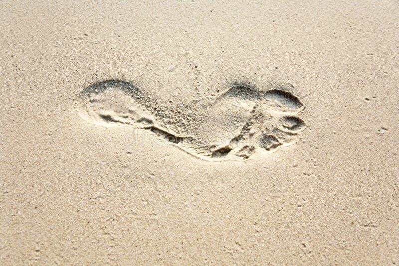 dorosłego świetnego odcisk stopy ludzki piasek obraz royalty free