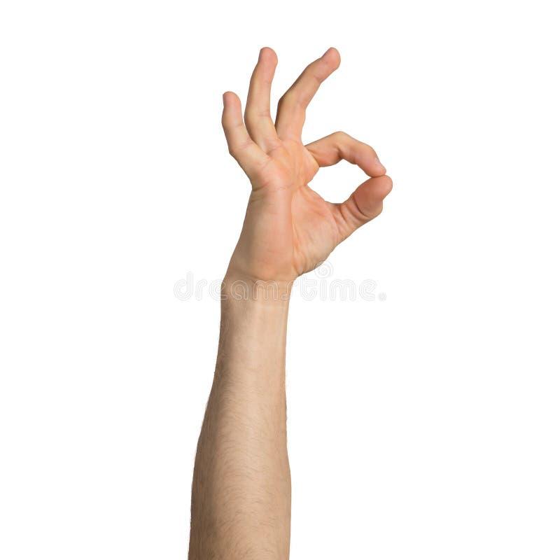 Dorosły mężczyzna ręki seansu ok gest obrazy royalty free