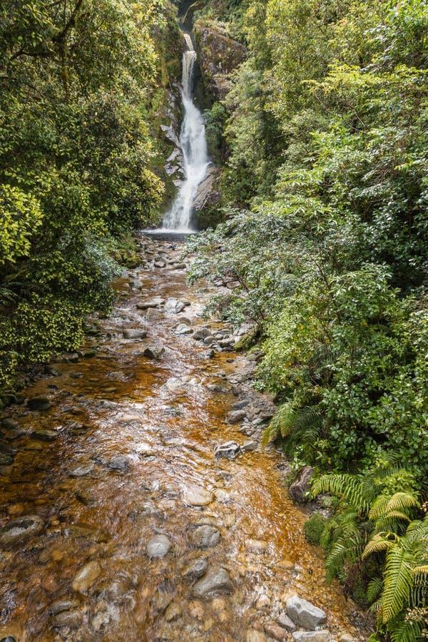 Dorothy tombe au lac Kaniere au Nouvelle-Zélande photos stock