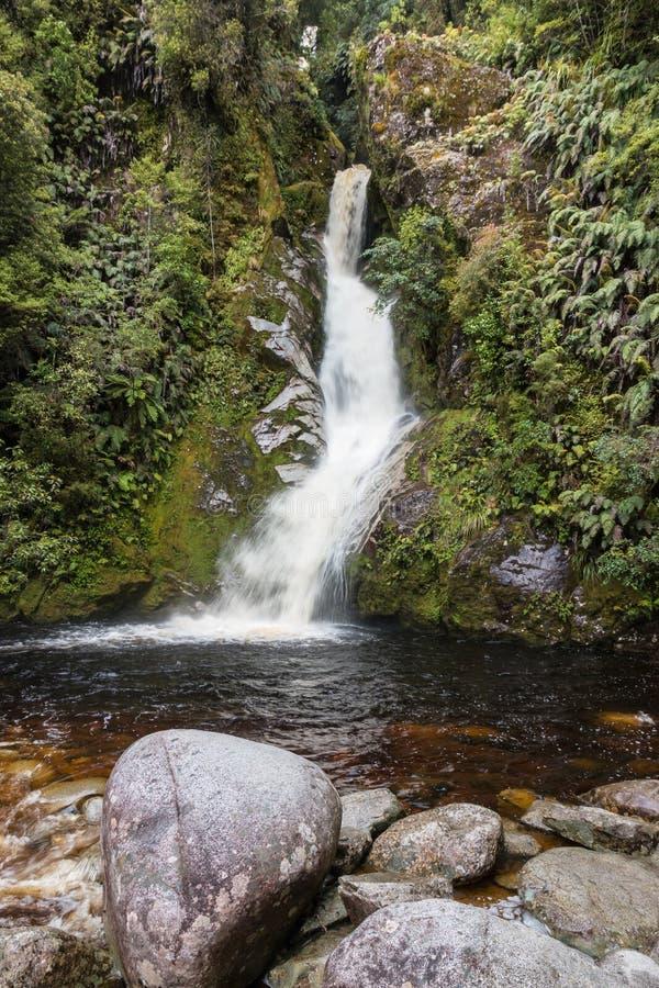 Dorothy tombe au lac Kaniere au Nouvelle-Zélande photos libres de droits
