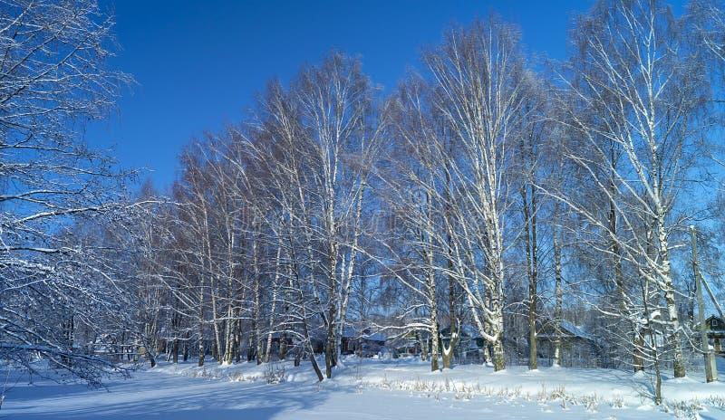 Dorp in berkehout in de winter stock fotografie