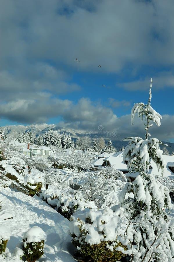 Dorp in de winter royalty-vrije stock fotografie