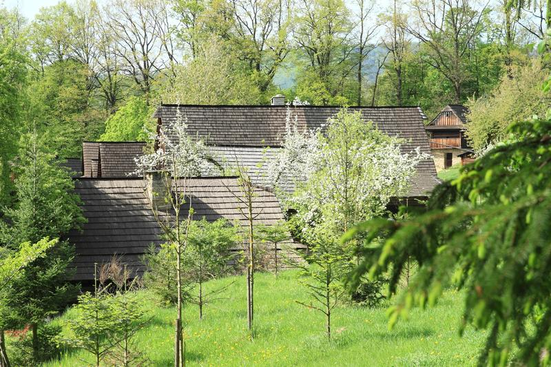 Dorp met betimmerde huizen met dakspanendaken stock afbeelding