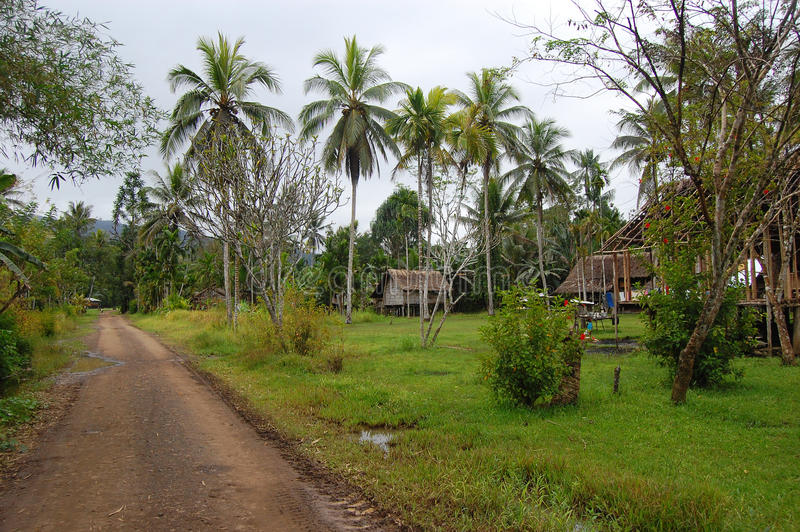 Dorp in Papoea-Nieuw-Guinea royalty-vrije stock foto