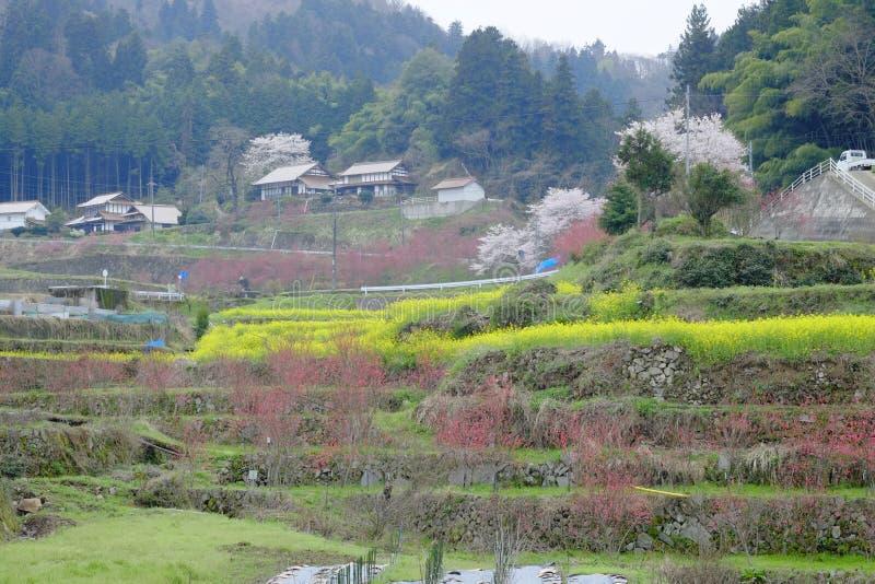 Dorp van ontvolking in Shimane-ounau-machi stock foto's