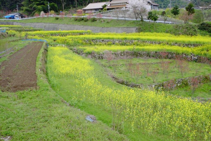 Dorp van ontvolking in Shimane-ounau-machi stock fotografie