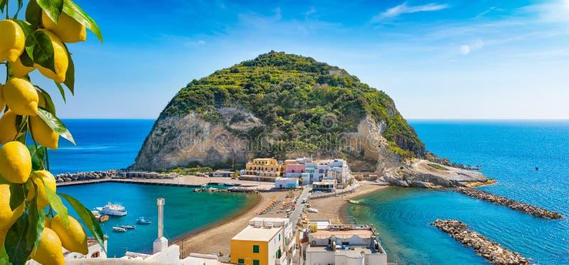 Dorp van Sant het ?Angelo, reuze groene rots in blauwe overzees dichtbij Ischia Eiland, Itali? royalty-vrije stock afbeelding