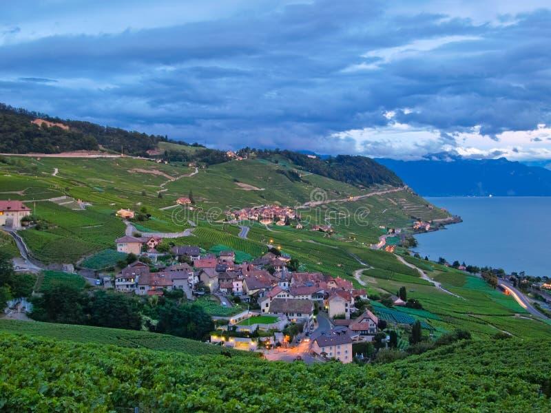 Dorp in wijngaarden, Zwitserland royalty-vrije stock afbeelding