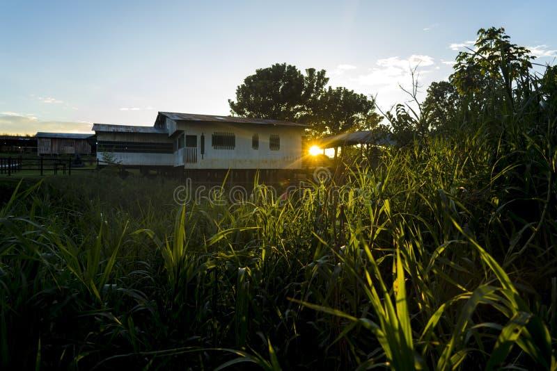 Dorpshuizen uit de Amazone bij zonsondergang in dorp uit de Amazone naast royalty-vrije stock afbeelding