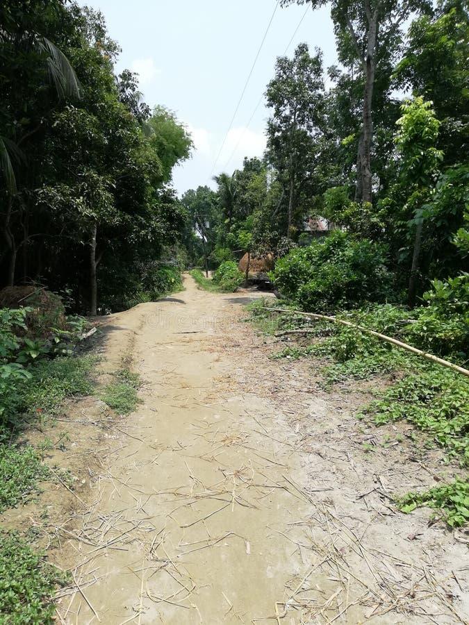 Dorpsstraat in Bangladesh stock foto's