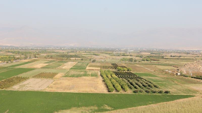 Dorpstuinen - landschap stock afbeeldingen